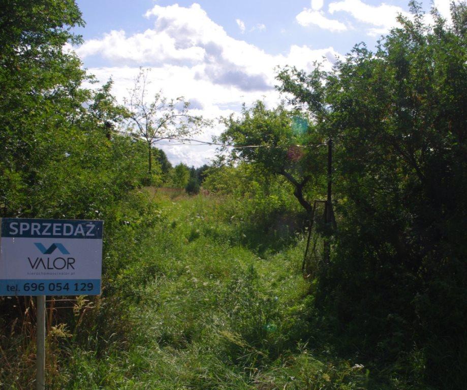 Działka Cigacice przy głównej drodze
